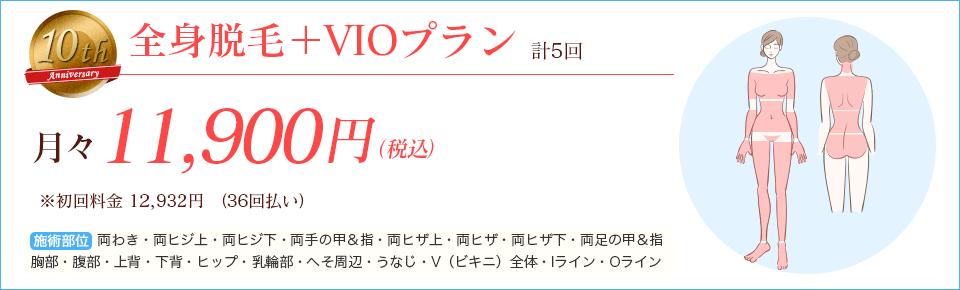 全身+VIO脱毛プラン