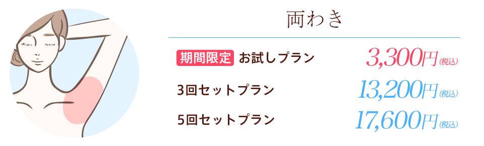 期間限定両わき3300円